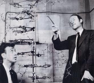 picture of James Watson and Francis Crick